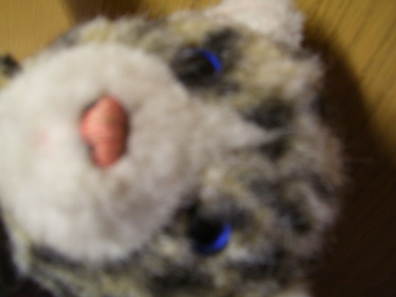 Alte Steiff  Katze Steiff Steiff Steiff Cat Tabby Knitted Fur 2732 17 1979 - 1983 26b400