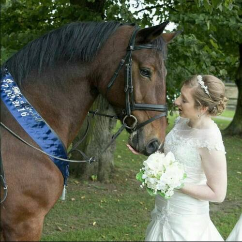 Equestrian High Quality Personalised Tiered Sash Competition All Occasions