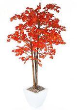 Más cercano a la naturaleza artificial 5ft 3 Rojo árbol de arce japonés-y seda artificial