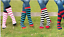 Rhinegold Ladies Soft Touch Knee High Socks One Size