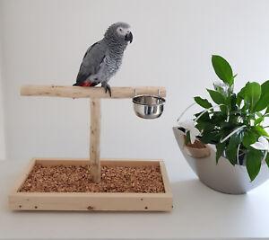 Patio pour tablette de seuil de table Perroquet Parrot Jouets