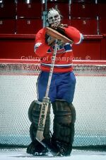 Ken Dryden Montreal Canadiens Photo #3 8x12