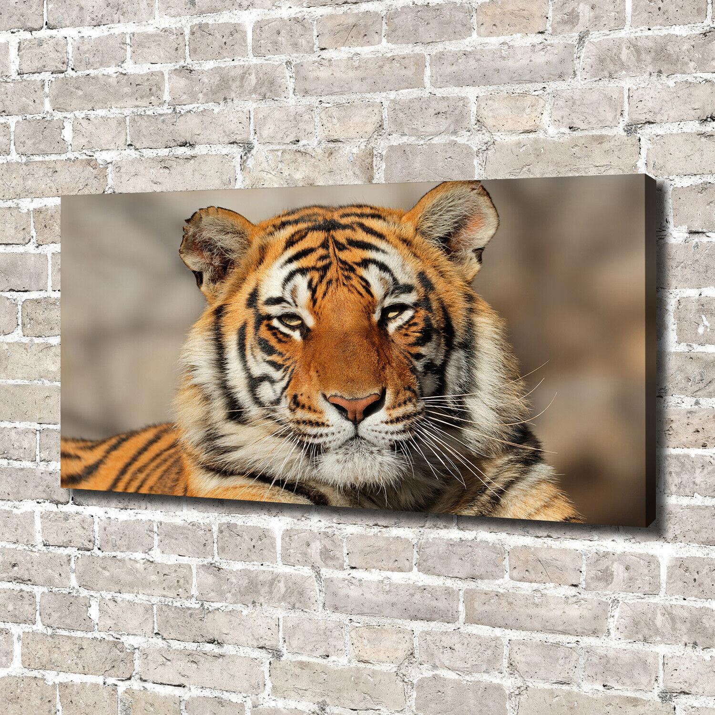 Leinwandbild Kunst-Druck 140x70 Bilder Tiere Bengalischer Tiger