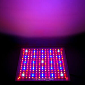 10x229 Led Red Blue Orangewhite Grow Light Panel