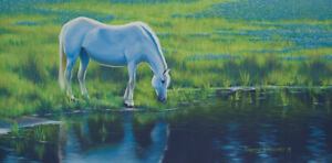 Original Acrylic Painting White Horse Pond 15x30 Wildlife by Timothy Stanford