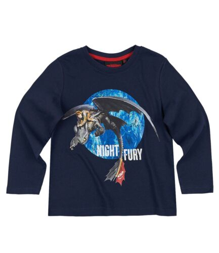 Boys Kids Children Dragons How to Train Your Dragon T-shirt Top Age 4-12