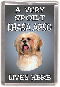 Lhasa-Apso-Dog-Fridge-Magnet-A-VERY-SPOILT-LHASA-APSO-LIVES-HERE