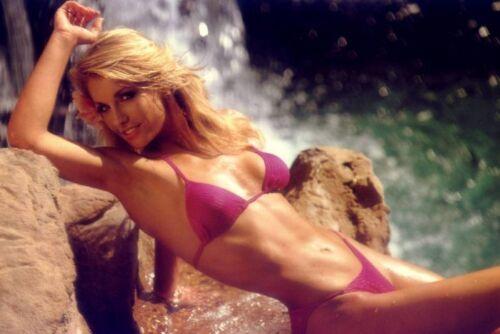 Multiple Sizes HEATHER THOMAS Poster Hollywood 80/'s Stars Hunk Playboy 02