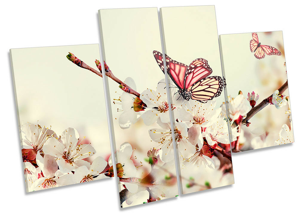 Butterfly Cream Floral Flowers Framed CANVAS PRINT Four Four Four Panel Wall Art 515a4f