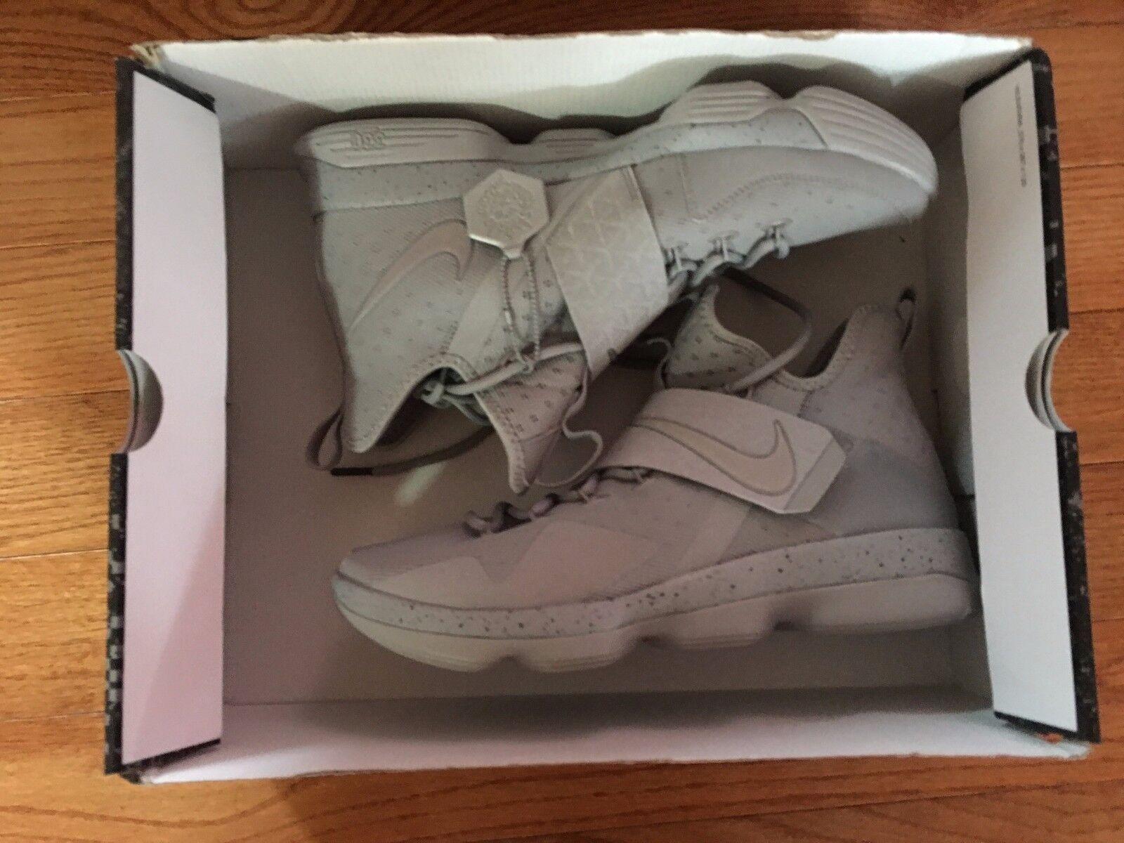 Nike Lebron XIV 14 Silver White Reflective Grey LeBron James Size 10.5 DS NEW