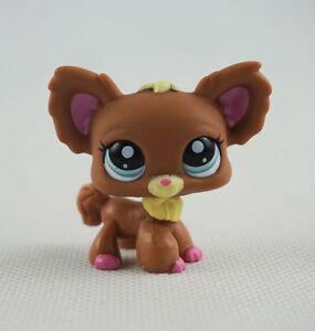 Littlest Pet Shop Lps Toys 1228 Chien Papillon Blue Eyes Brown Chihuahua Dog Ebay