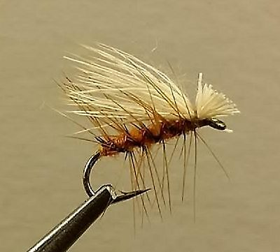 1 Dzn Dry Fly Trout Brown Elk Hair Caddis