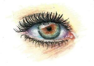 ACEO-eye-realism-original-painting-colored-pencil-art-card