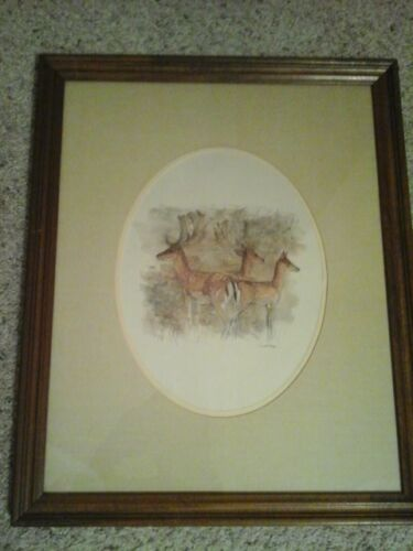 Mads Stage Danish Artist Watercolor Fallow Deer Vtg Print 18X22 Matted