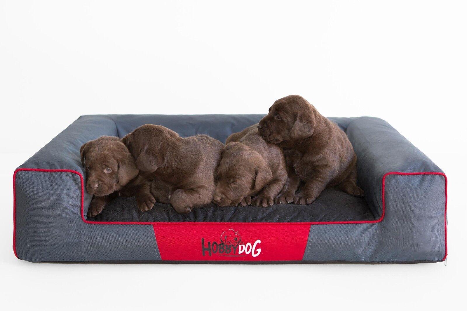 Bed Dog Victoria Puppy XXL Hobbydog Puppies Sofa with Warm Cosy Thick Mattress