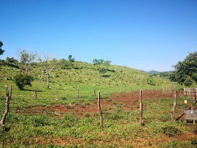 Rancho de 70 Hectáreas por La carretera El Porvenir