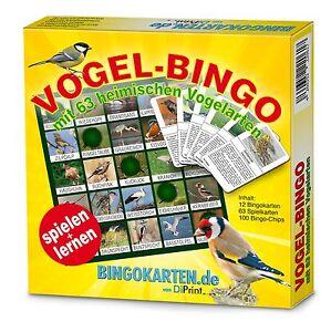 Vogel-Bingo-Spiel-und-Lernspass-fuer-die-ganze-Familie