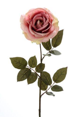 Rose Bauernrose Seidenblume Kunstblume rosa altrosa creme 71 cm 180074 F7