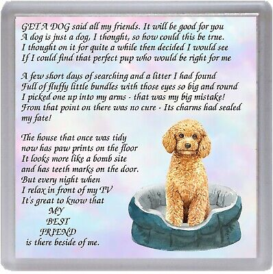 "Dog Coaster /""MY BEST FRIEND Poem .../"" Novelty Gift by Starprint Apricot Poodle"