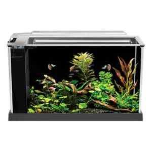 Image Is Loading Fluval Spec V Aquarium 5 Gallon Black Desktop