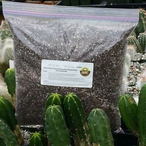 Cactus-mix-soil-blend-1-gallon-Cactus-Cacti-Succulent-Real-Live-Plant