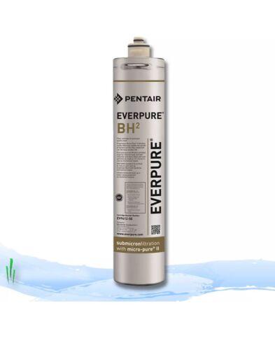 BH-2 Filter Cartridge CASE OF 6 FILTERS Everpure EV9612-50