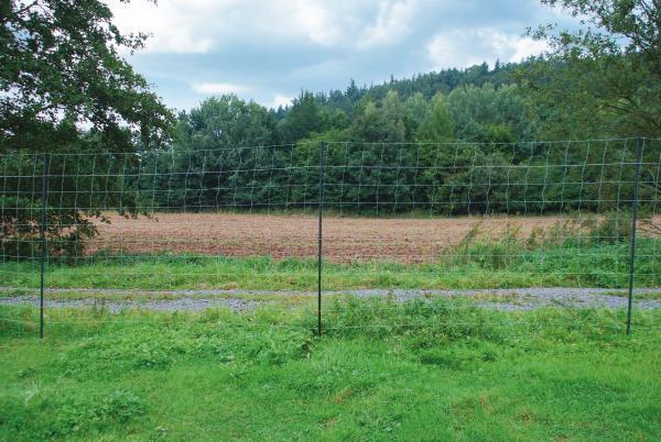 Arndt Wild projoección bosque projoección animalcare horseprojoect rojowild-rojo