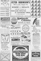 VICTORIAN ADVERTS Fox's Umbrella, Carter's Liver Pills - Antique Print 1893