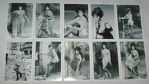NATALIE-WOOD-STOCKINGS-SUSPENDERS-SEXY-SET-TEN-6-X-4-GLOSSY-B-W-VINTAGE-PHOTOS