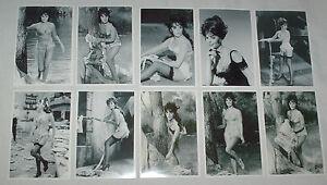 NATALIE-WOOD-STOCKINGS-SUSPENDERS-SEXY-SET-TEN-6-X-4-GLOSSY-B-W-VINTAGE-PHOTOS