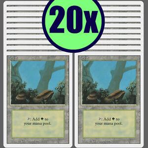 20x FOREST Revised Same Art Basic Land NM/LP MTG Magic the Gathering