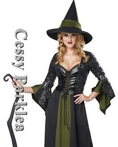 Classic-Witch-Wicked-Green-Fancy-Dress-Up-Outfit-Women-Halloween-Costume
