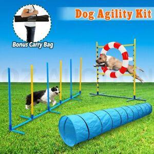 Pet Dog Agility Weave Poles Training Tunnel Jump Tyre 3 Piece Combo Set