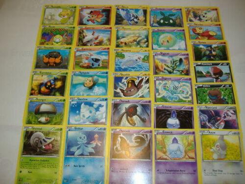31 COMPLETE Black /& White NOBLE VICTORIES Common Nonholo Card Set-2011 RELEASE