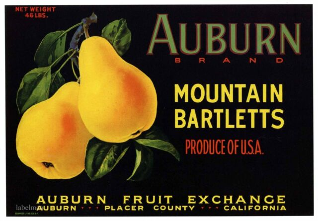 AUBURN Vintage Placer County Pear Crate Label California ***AN ORIGINAL LABEL***