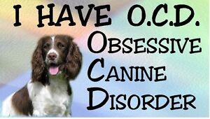 ENGLISH-SPRINGER-OBSESSIVE-CANINE-DISORDER-Dog-Car-Sticker-By-Starprint