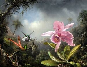Orchid-with-Two-Hummingbirds-Painting-by-Martin-Johnson-Heade-Art-Reproduction