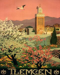 """Algeria Tlemcen Flower Arabic Arab Country Travel 16""""X20"""" Vintage Poster  FREE SH   eBay"""