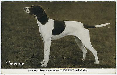 POINTER SPORTEX CLOTH VINTAGE DOG ADVERT POSTCARD