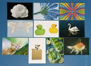 Set-of-10-NEW-Mixed-Postcards-great-for-Postcrossing-amp-Postcardsofkindness-set-2