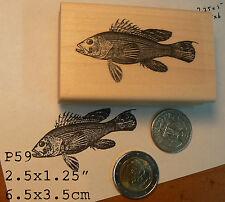 P59 Carp Fish rubber stamp Wm
