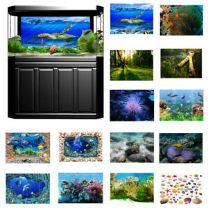 MARINA-CLEAR-VIEW-BACKGROUND-SELF-ADHESIVE-POSTER-NO-TAPE-STICKERS-AQUARIUM-FISH