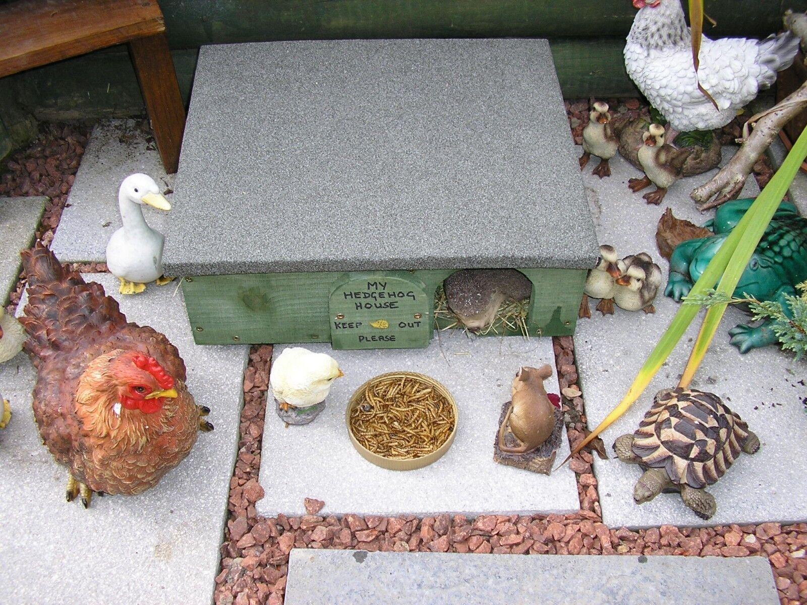 Hedgehog House Hibernation Feeding And Breeding Box Wooden Green