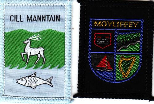 Boy Scout Badges Ext CILL MANNTAIN EXT MOYLIFFEY SAI IRELAND