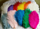 10''-12'' LONG OSTRICH FEATHERS, PACKS of 1 5 10 BEAUTIFUL COLOURS