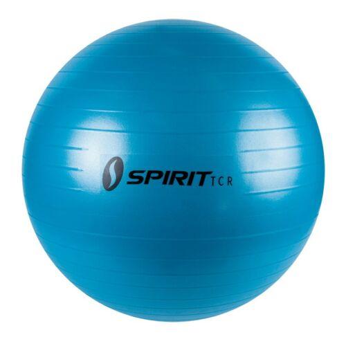 Spirit Gymnastikball Ø 55 Sitzball Fitnessball Yogaball Bürostuhl Ball Pumpe