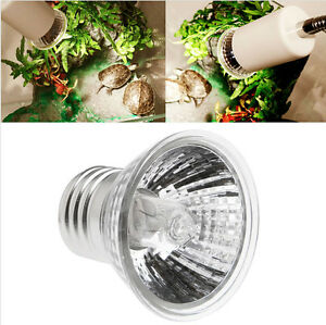 220V 75W UVA UVB Reptile Tortoise Heating Lamp Full Spectrum Sunlamp Basking Pet