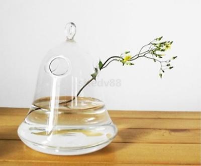 Clear Bell Glass Vase Wall Hanging Bottle Terrarium for Plant Flower Decor