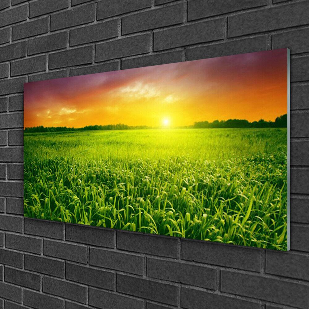 Tableau sur verre Image Impression 100x50 Floral Champ De Blé Lever Du Soleil