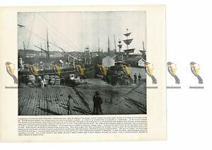 Auckland-Harbour-New-Zealand-Book-Illustration-Print-1899